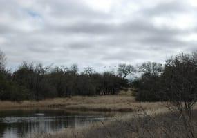 317 CR 272, Priddy, Texas 76870, ,Farm/Ranch,For Sale,CR 272,1016