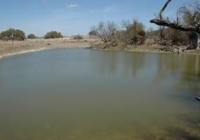 CR 119, Mullin, Texas 76864, ,Farm/Ranch,For Sale,CR 119,1018